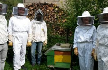 Devenir apprenti apiculteur